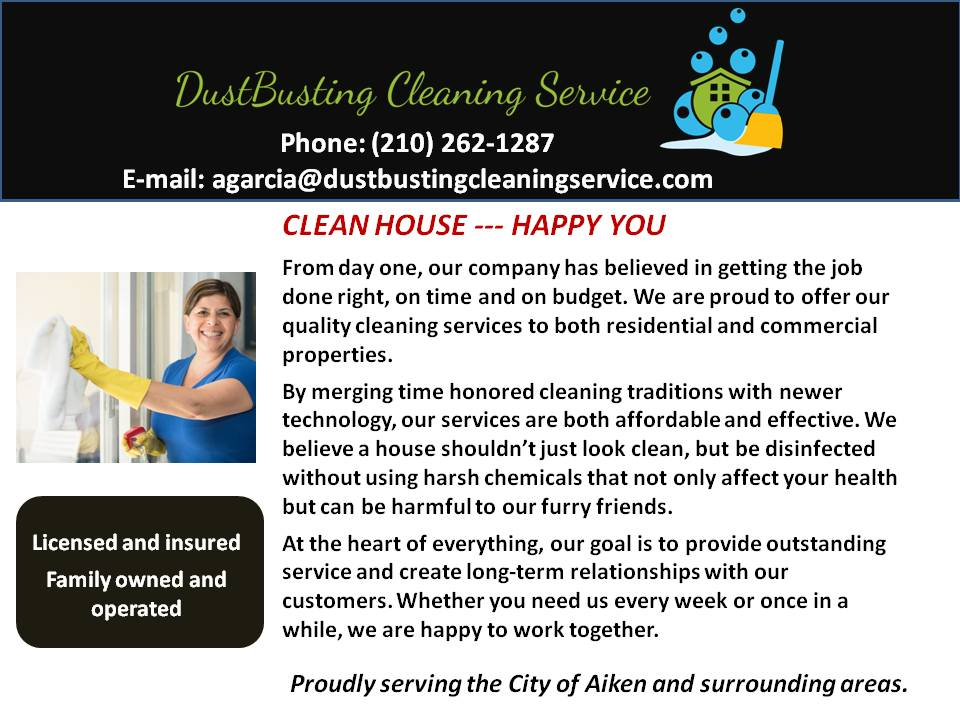 Dustbusting Cleaning Service
